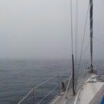 01_Nebelsuppe