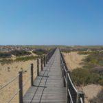 14_Weg zum Strand